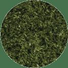 Green Playground Grass