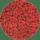 Red Playground Grass